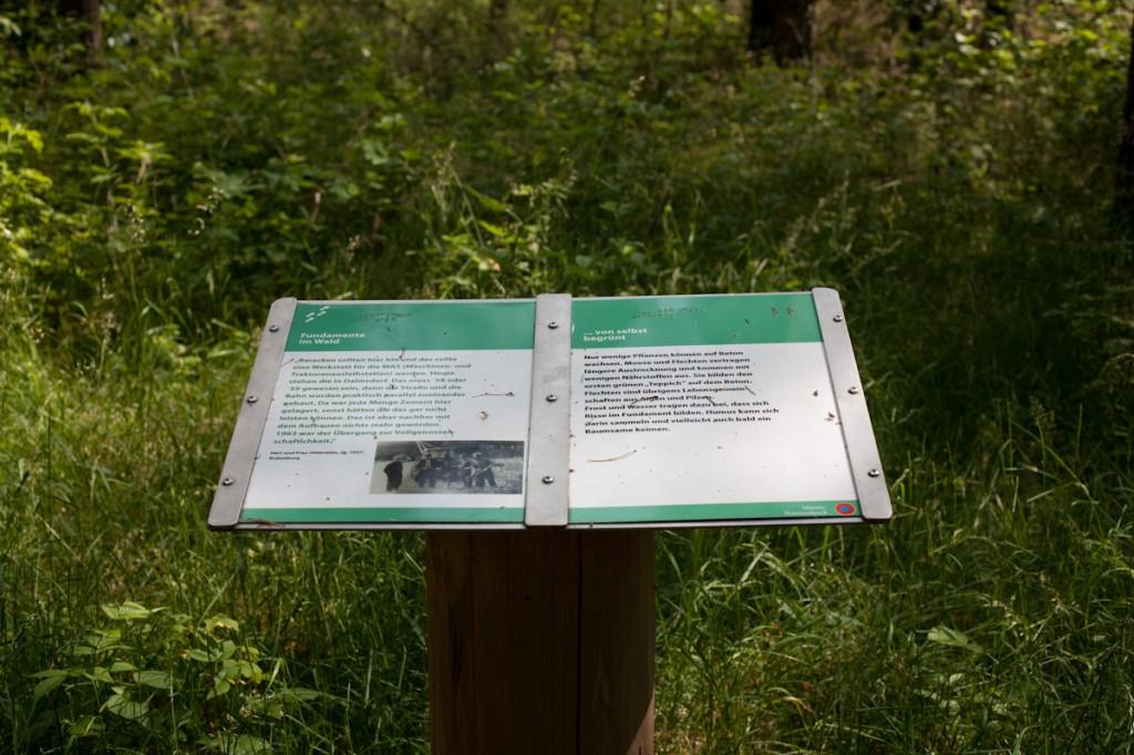 Bild: Eine Schautafel auf einem Pult. Im oberen grünen Bereich befindet sich die Überschrift in Braile. Darunter viel Text in gut lesbarer Schwarzschrift.