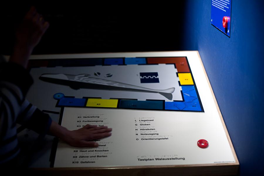 Foto: Auf dem Tastplan der Walausstellung erkennt man die Themenkammern, welche in verschiedenen Farben dargestellt sind. Weiterhin sind die Braile- und Schwarzschriftbeschriftungen gut zu erkennen. Rechts unten sieht man einen Infopunkt, in den der Hörstift hineingeschoben wird.